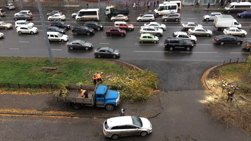 На самой загазованной площади Омска спилили деревья